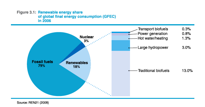 Renewable energy share of global final energy consumption in 2006.